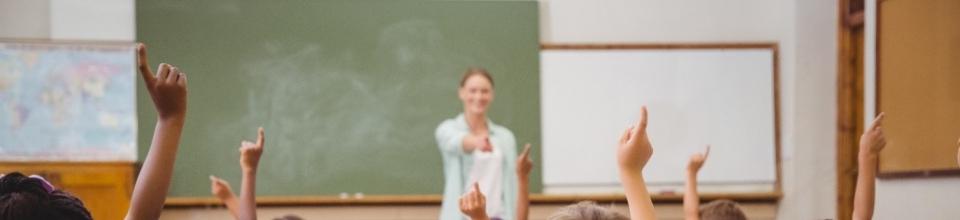 Sustainable Healthy Schools