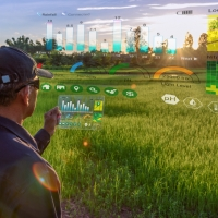 AI-platform for agri-food applications from field to fork
