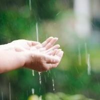 'Regen – het nieuwe goud?' Nieuwe toepassingen voor gerecupereerd hemelwater